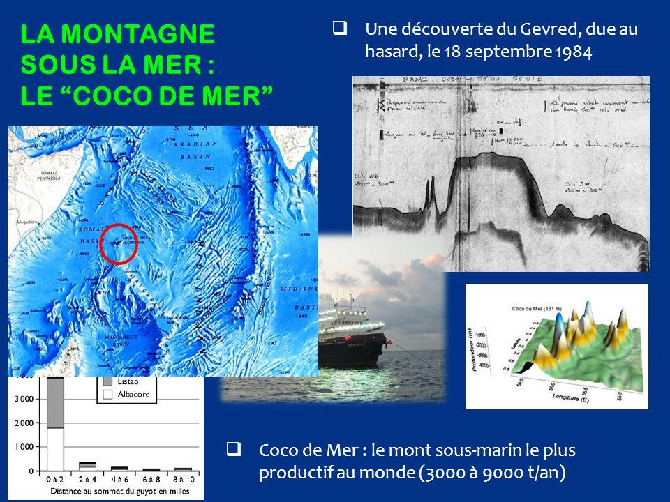 La montagne sous la mer : le COCO DE MER