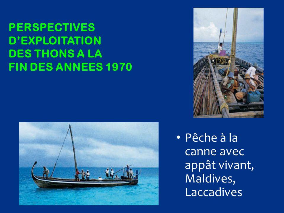 PERSpectives d'exploitation des thons a la fin des annees 1970