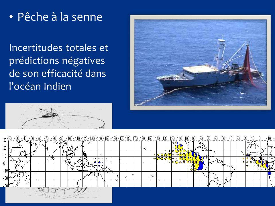 Pêche à la senne Incertitudes totales et prédictions négatives de son efficacité dans l'océan Indien.
