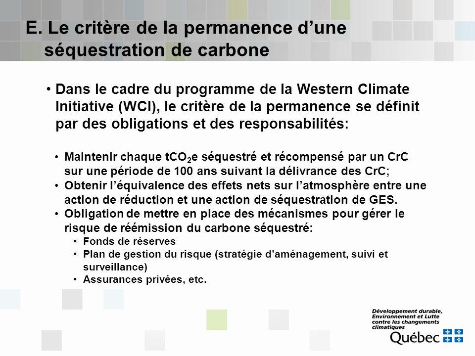 E. Le critère de la permanence d'une séquestration de carbone
