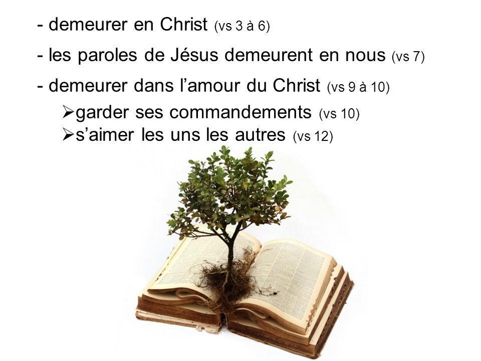 - demeurer en Christ (vs 3 à 6)