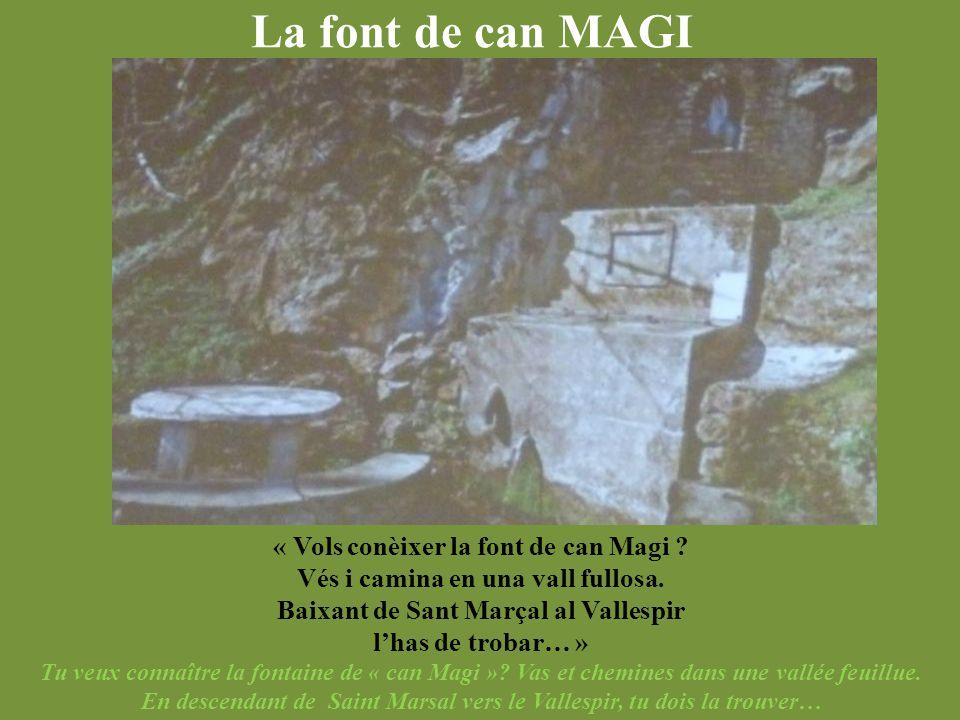 La font de can MAGI « Vols conèixer la font de can Magi