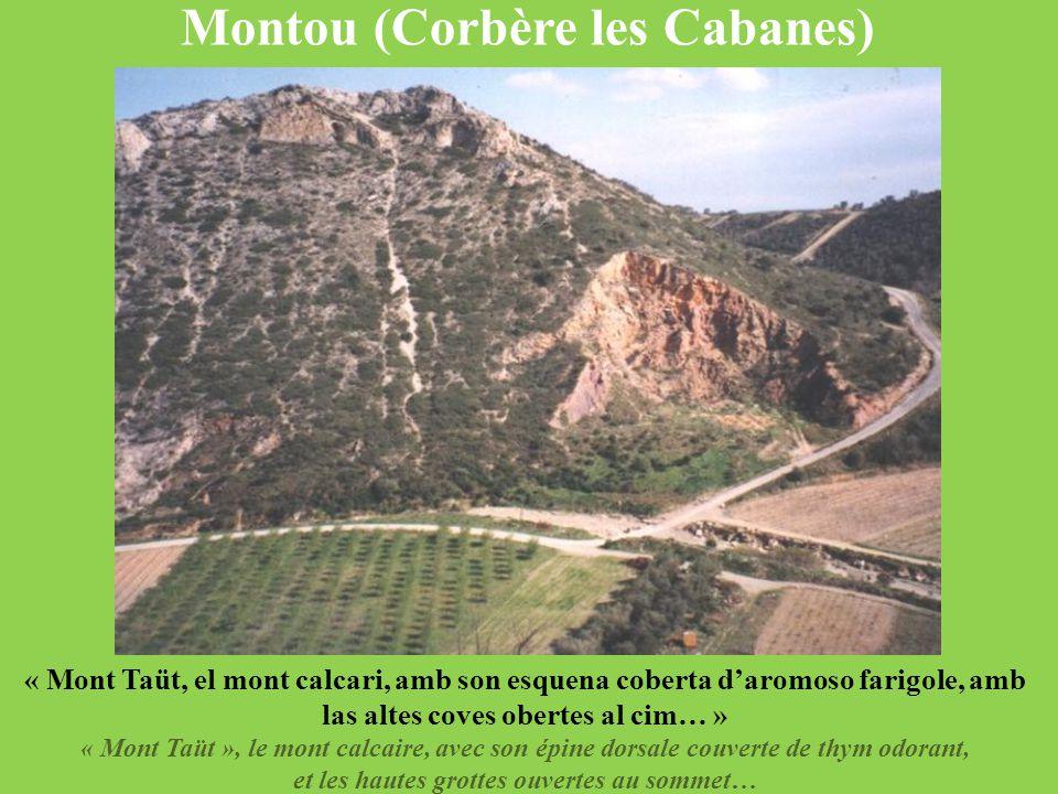 Montou (Corbère les Cabanes) et les hautes grottes ouvertes au sommet…