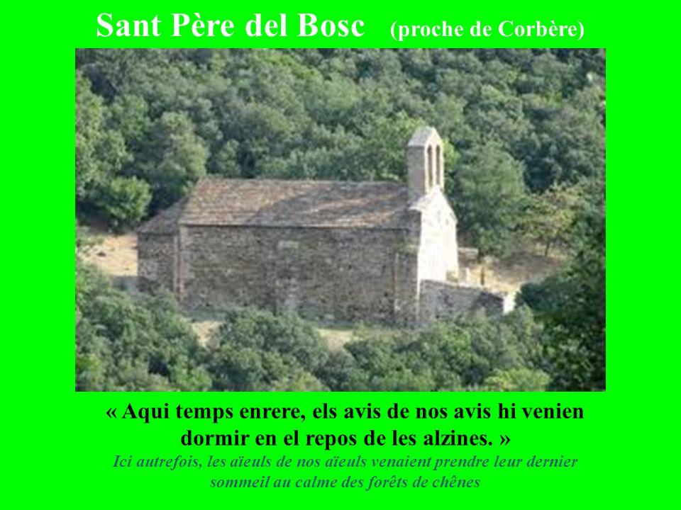 Sant Père del Bosc (proche de Corbère)