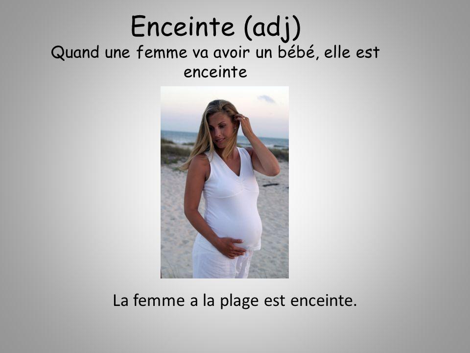 Enceinte (adj) Quand une femme va avoir un bébé, elle est enceinte