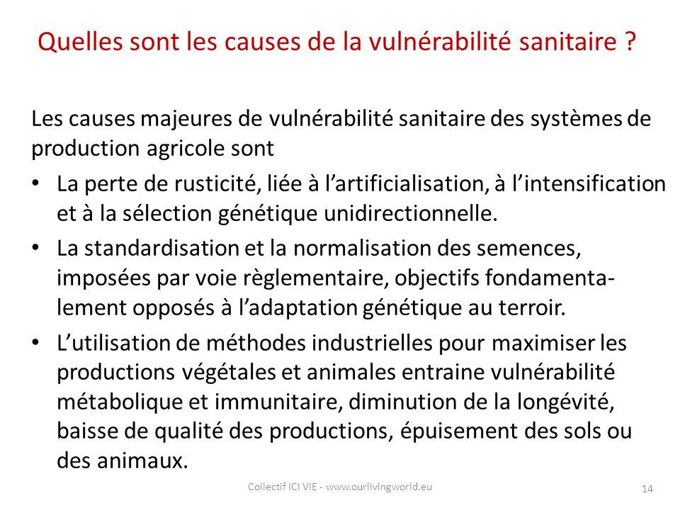 Quelles sont les causes de la vulnérabilité sanitaire