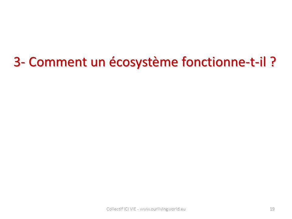 3- Comment un écosystème fonctionne-t-il