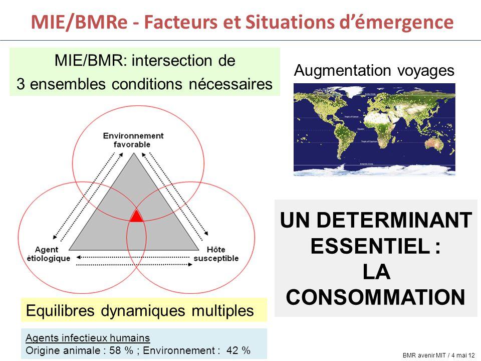 MIE/BMRe - Facteurs et Situations d'émergence