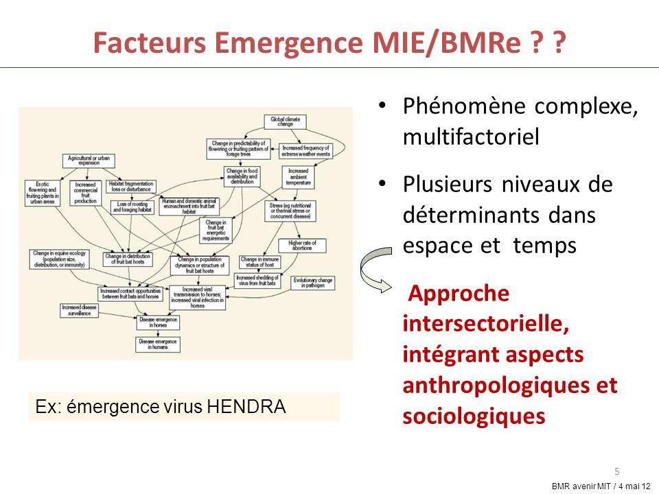 Facteurs Emergence MIE/BMRe