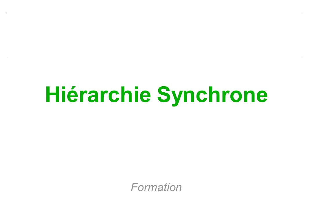 Hiérarchie Synchrone Formation