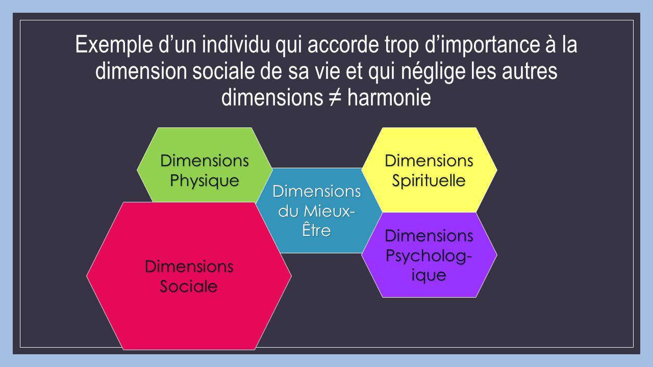 Exemple d'un individu qui accorde trop d'importance à la dimension sociale de sa vie et qui néglige les autres dimensions ≠ harmonie