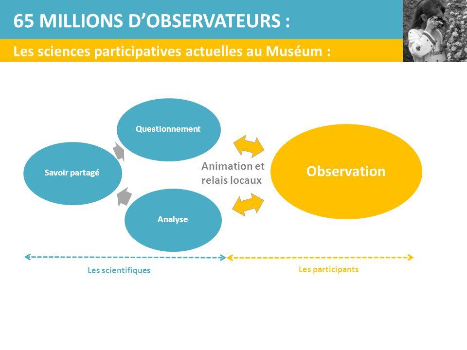 65 MILLIONS D'OBSERVATEURS :