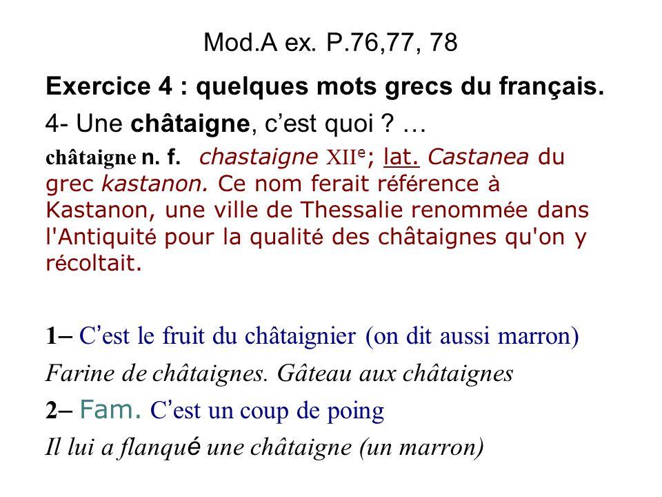 Exercice 4 : quelques mots grecs du français.