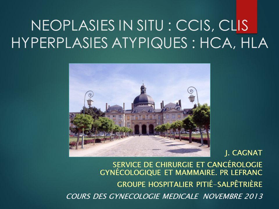 NEOPLASIES IN SITU : CCIS, CLIS HYPERPLASIES ATYPIQUES : HCA, HLA