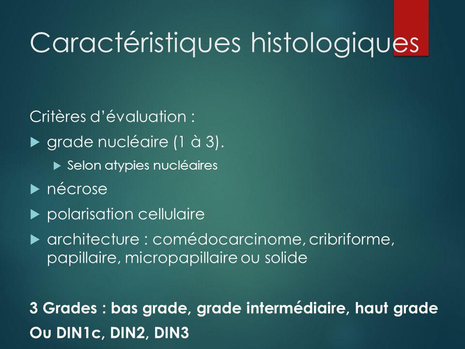 Caractéristiques histologiques