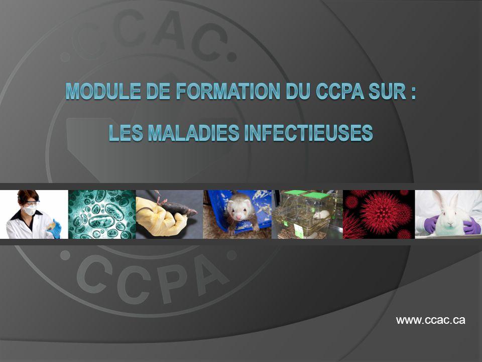 MODULE DE FORMATION DU CCPA sur : LES MALADIES INFECTIEUSES
