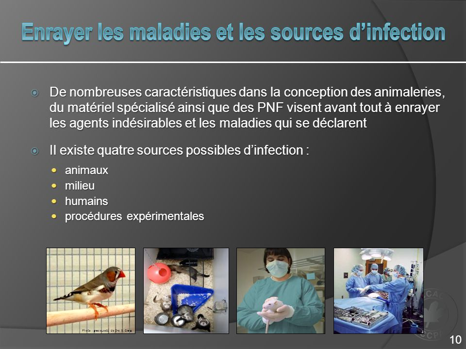 Enrayer les maladies et les sources d'infection
