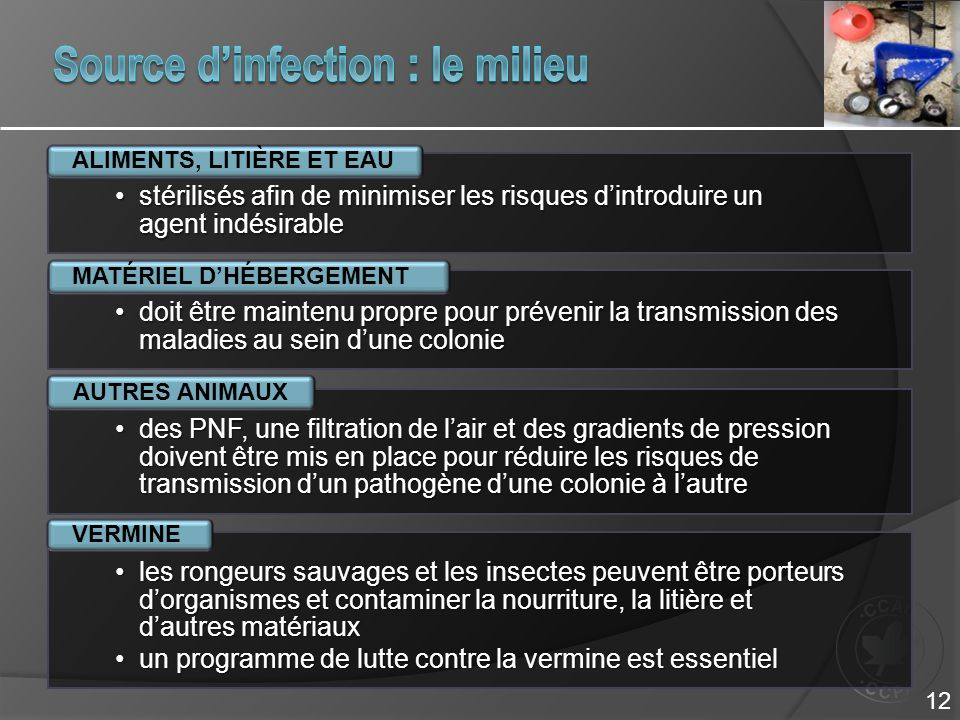 Source d'infection : le milieu