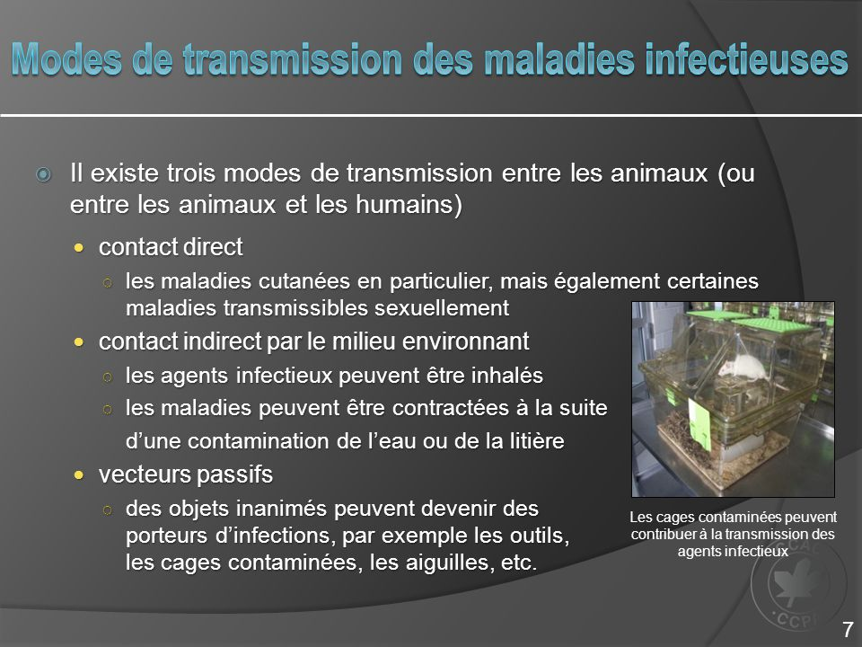 Modes de transmission des maladies infectieuses
