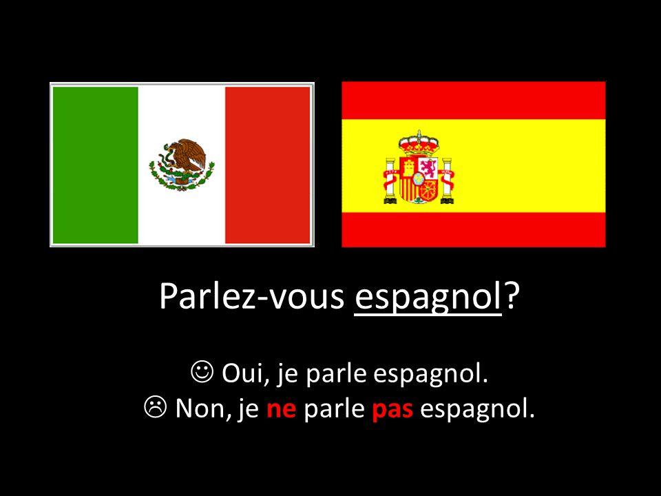  Non, je ne parle pas espagnol.