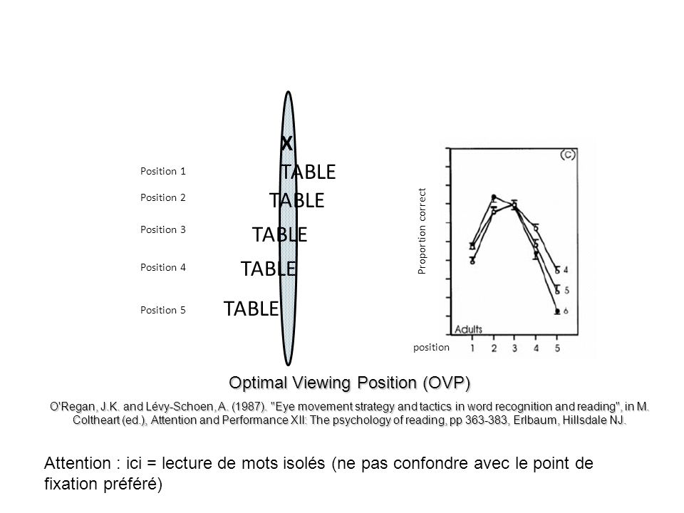 Optimal Viewing Position (OVP)