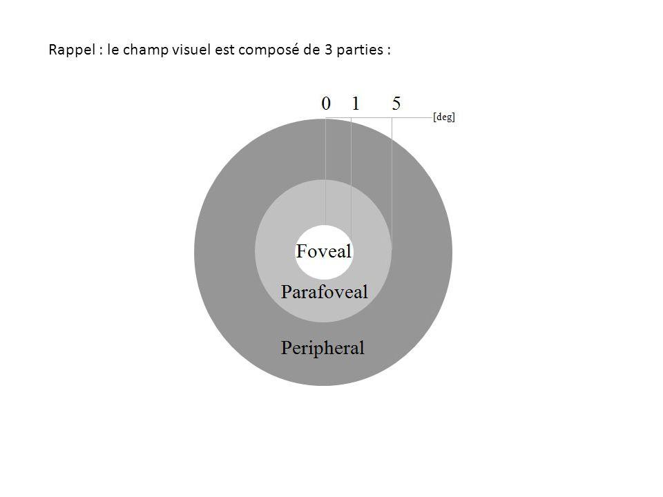 Rappel : le champ visuel est composé de 3 parties :