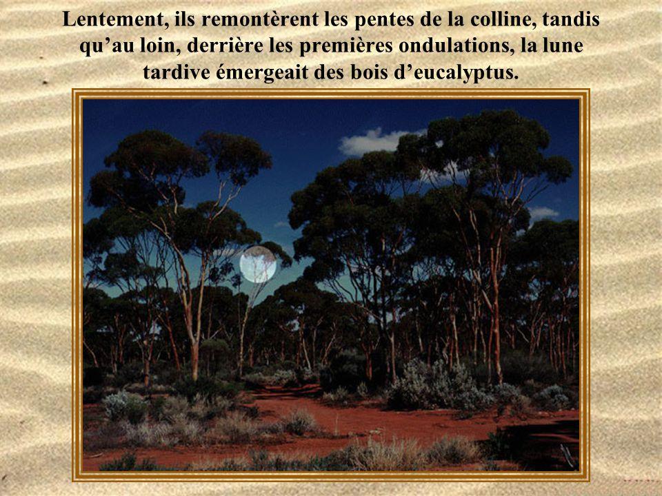 Lentement, ils remontèrent les pentes de la colline, tandis qu'au loin, derrière les premières ondulations, la lune tardive émergeait des bois d'eucalyptus.