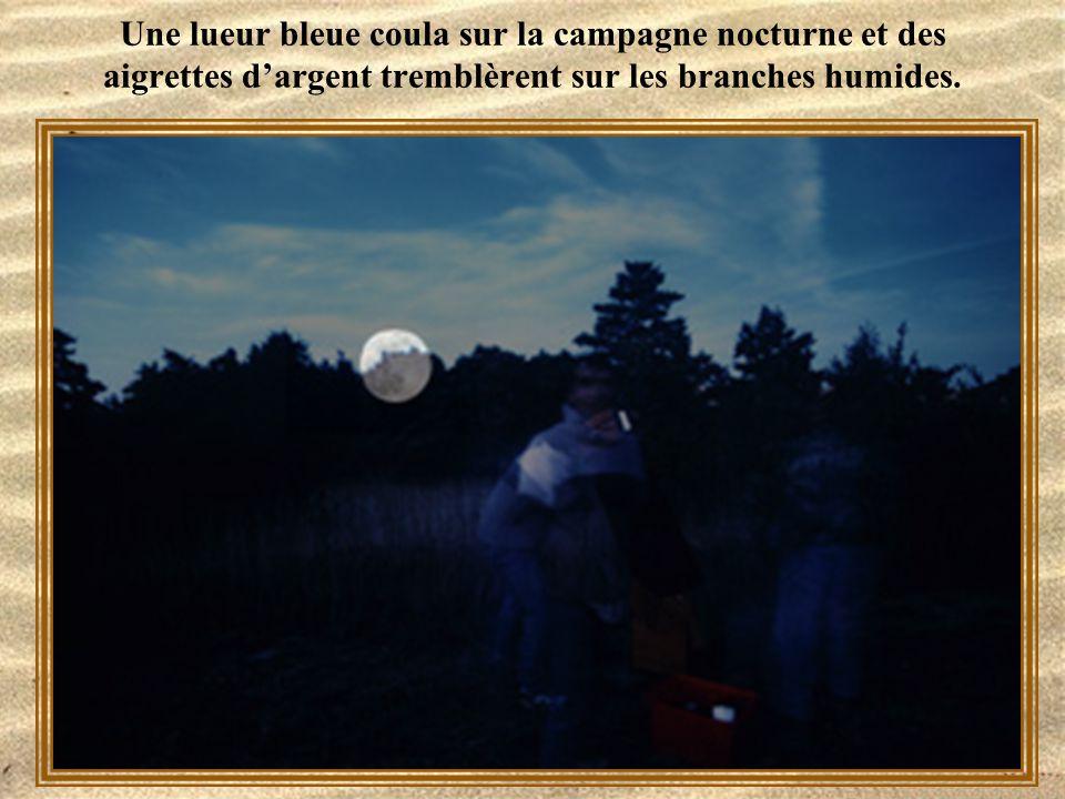 Une lueur bleue coula sur la campagne nocturne et des aigrettes d'argent tremblèrent sur les branches humides.