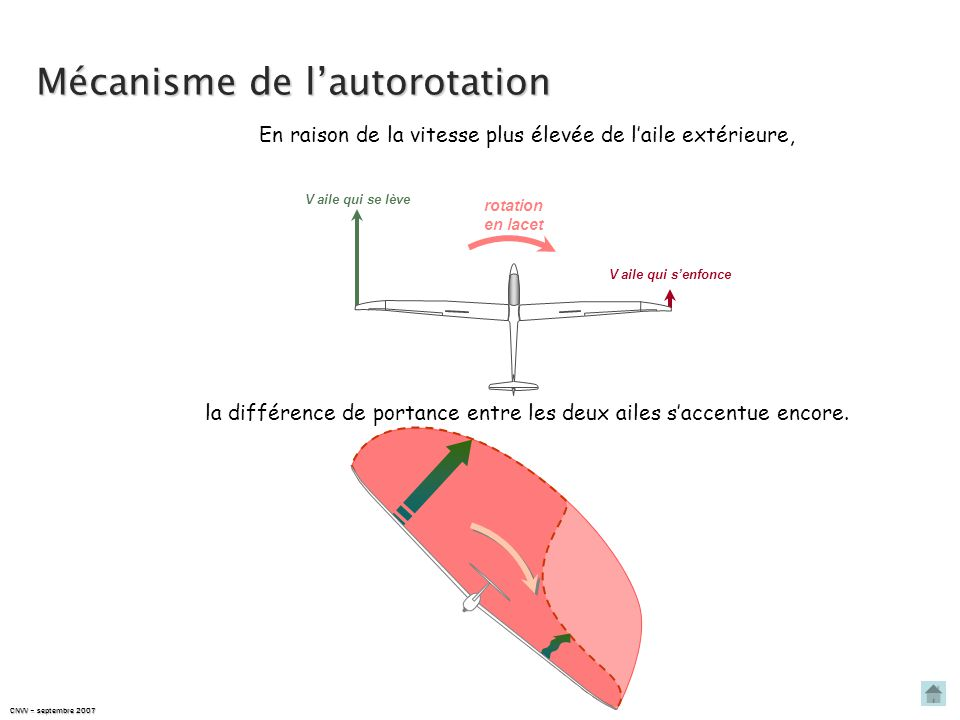 Mécanisme de l'autorotation