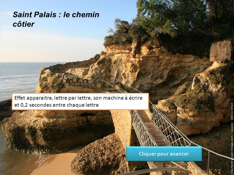 Saint Palais : le chemin côtier