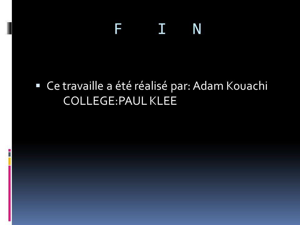 F I N Ce travaille a été réalisé par: Adam Kouachi COLLEGE:PAUL KLEE