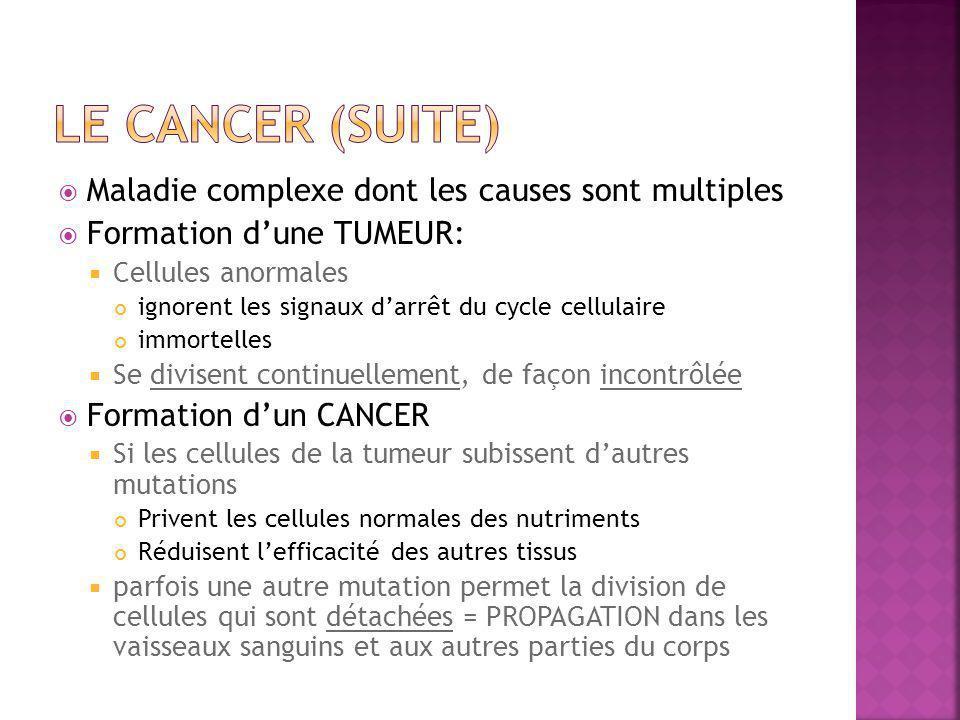 Le cancer (suite) Maladie complexe dont les causes sont multiples