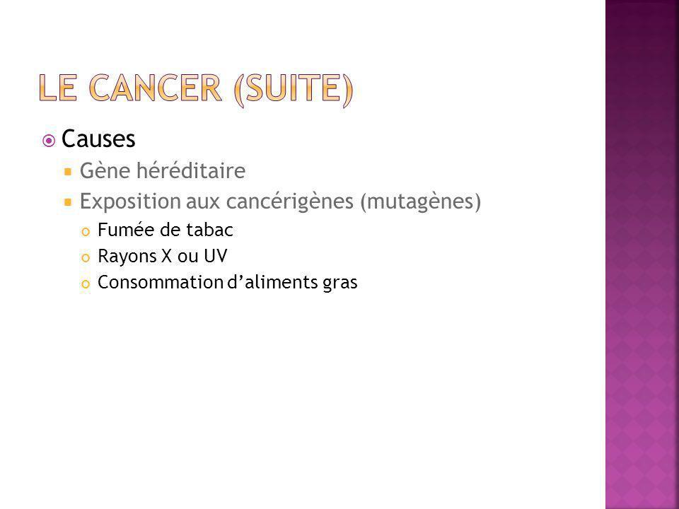 Le cancer (suite) Causes Gène héréditaire