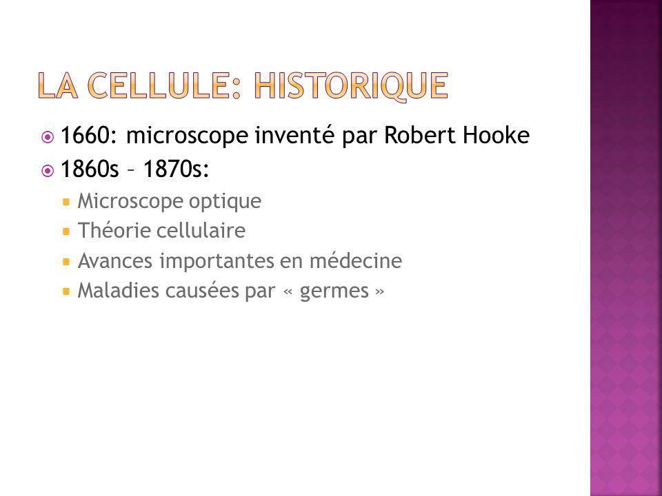 La cellule: historique