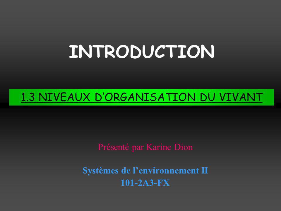 Systèmes de l'environnement II