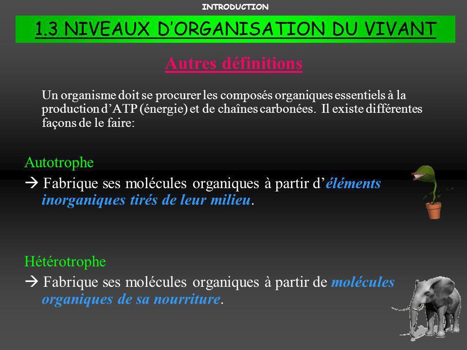 1.3 NIVEAUX D'ORGANISATION DU VIVANT