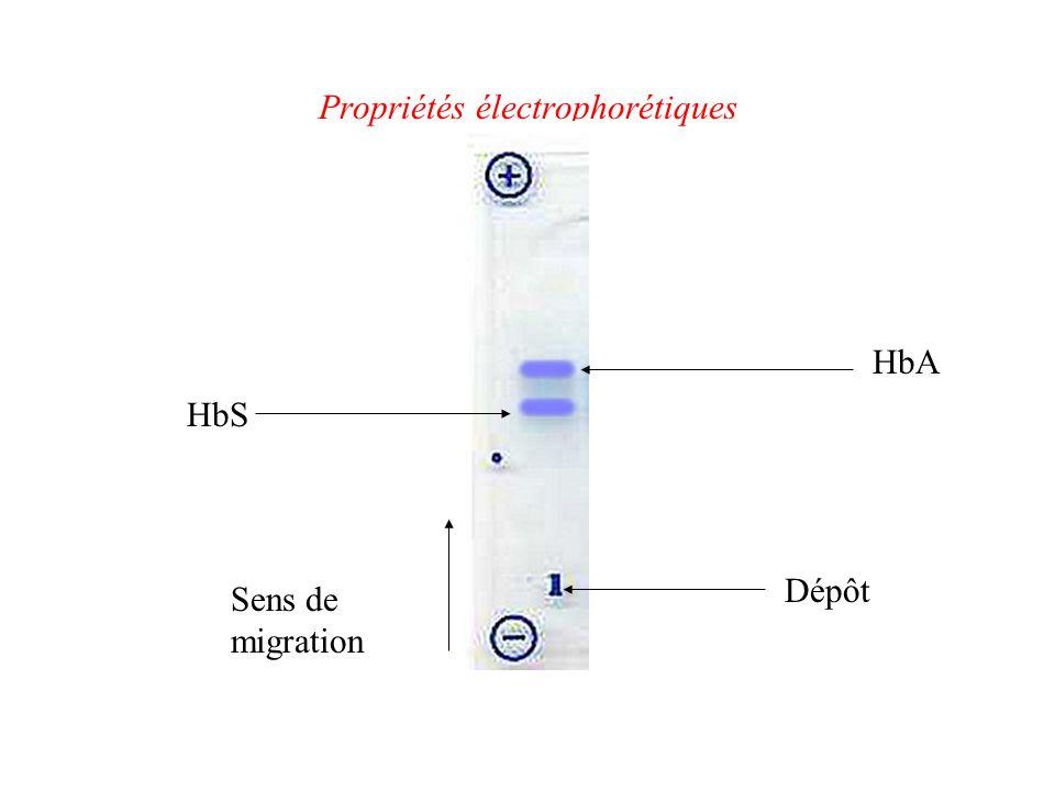 Propriétés électrophorétiques