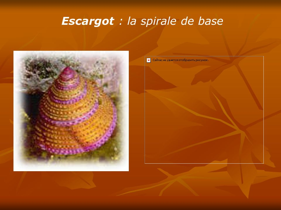 Escargot : la spirale de base