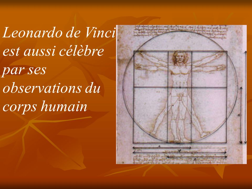 Leonardo de Vinci est aussi célèbre par ses observations du corps humain