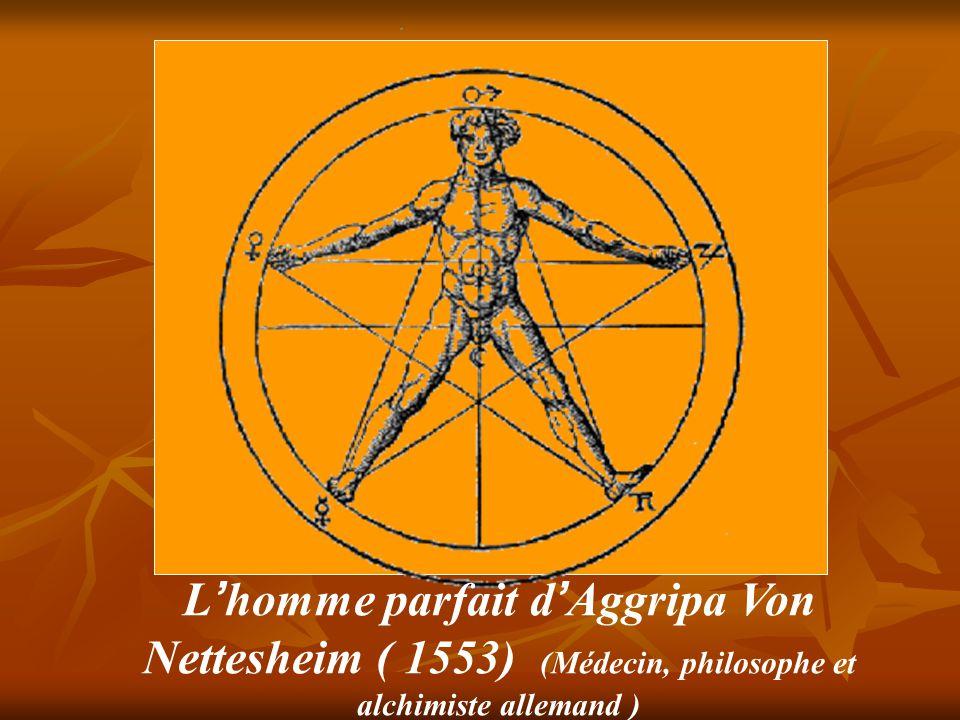L'homme parfait d'Aggripa Von Nettesheim ( 1553) (Médecin, philosophe et alchimiste allemand )