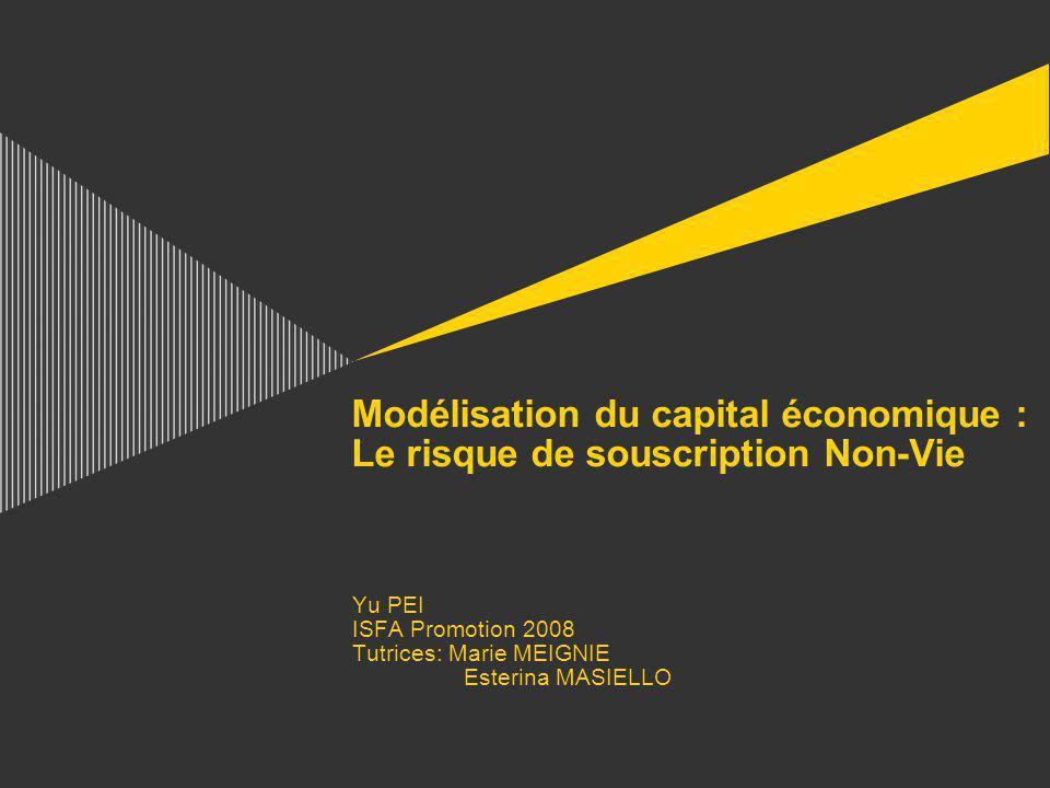 Modélisation du capital économique : Le risque de souscription Non-Vie