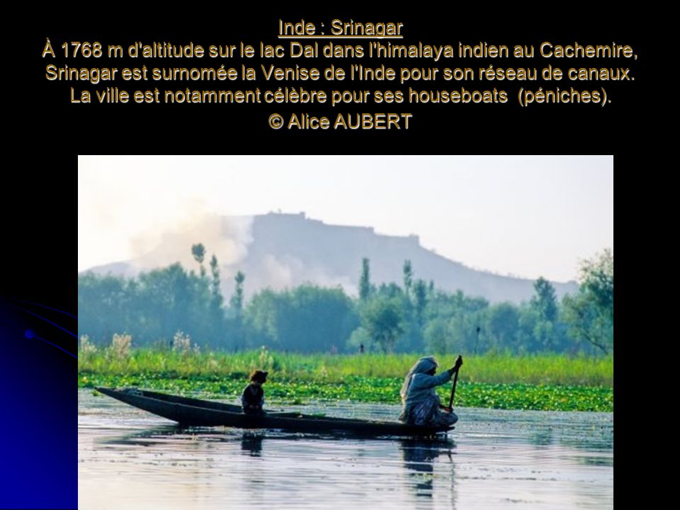 Inde : Srinagar À 1768 m d altitude sur le lac Dal dans l himalaya indien au Cachemire, Srinagar est surnomée la Venise de l Inde pour son réseau de canaux.