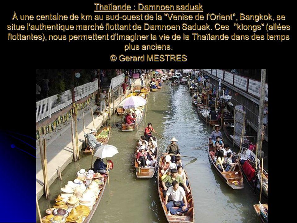Thaïlande : Damnoen saduak À une centaine de km au sud-ouest de la Venise de l Orient , Bangkok, se situe l authentique marché flottant de Damnoen Saduak.