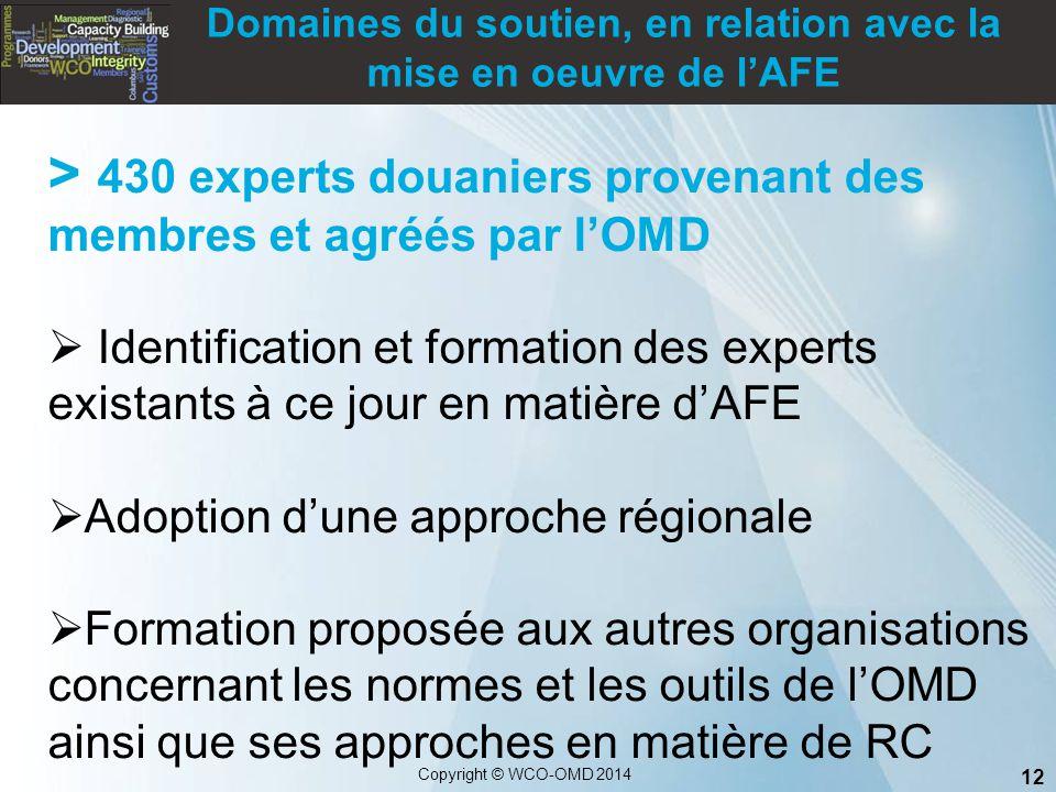 Domaines du soutien, en relation avec la mise en oeuvre de l'AFE