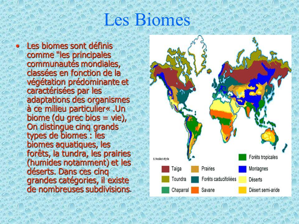 Les Biomes