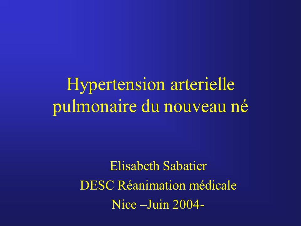 Hypertension arterielle pulmonaire du nouveau né