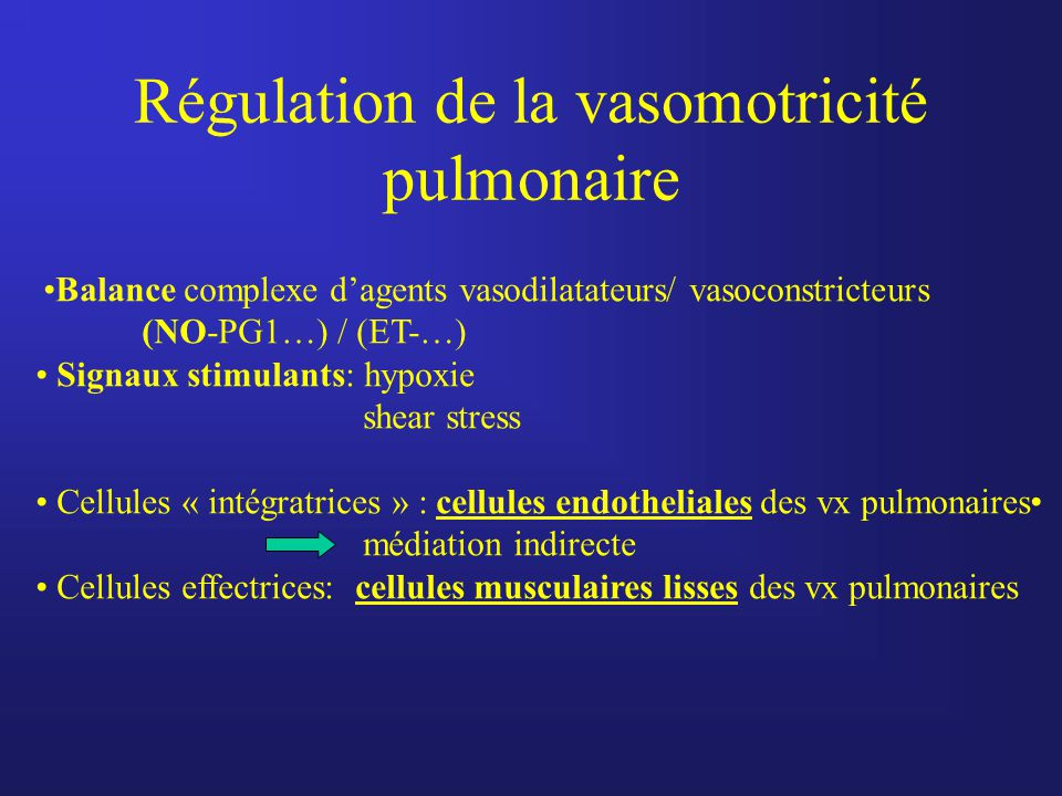Régulation de la vasomotricité pulmonaire