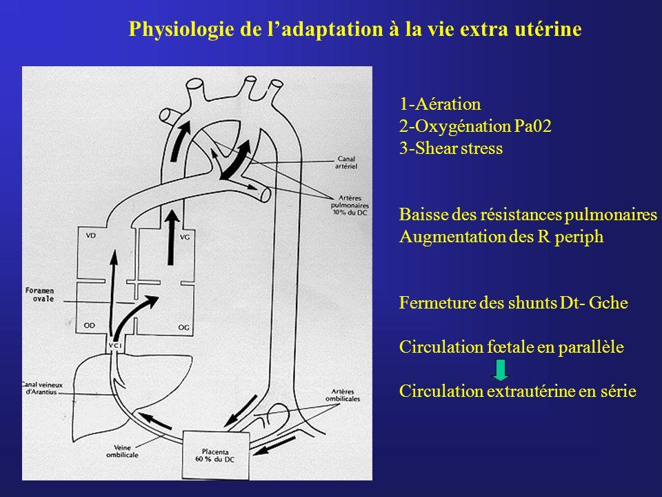Physiologie de l'adaptation à la vie extra utérine