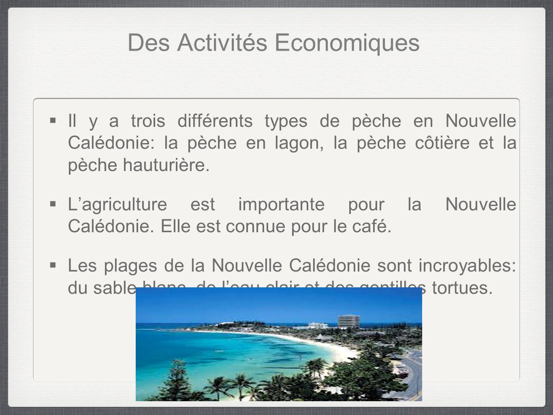 Des Activités Economiques