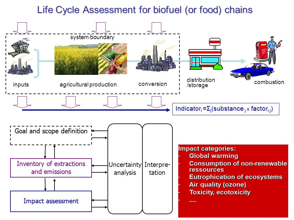 Life Cycle Assessment for biofuel (or food) chains